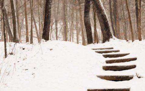 Let it snow! Let it snow! Please! Let it snow!