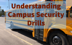 Understanding school security
