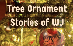 Christmas tree ornament stories [Photo Story]