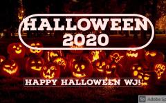 Happy Halloween, 2020 style...